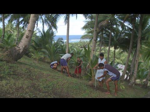 Desenvolvimento sustentável: Uma ilha orgânica na Oceania