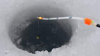 ОНО ПОДНЯЛО КИВОК КАК КАРАСЬ УДОЧКА ПРЁТ Зимняя рыбалка 2021