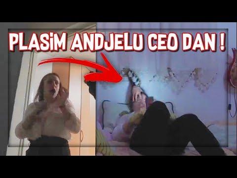 PLASIM ANDJELU CEO DAN *vristi od straha*