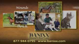 Banixx Wound & Hoof Care 90 second review