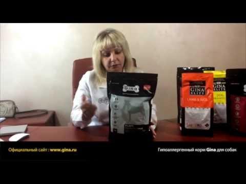 Гипоаллергенные корма Gina для собак (выпуск №1)