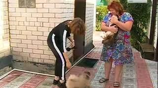 Вести-Курск. Тотальная вакцинация - Россия Сегодня