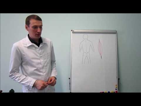 Лечение болей мышечных