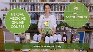 Herbal Medicine Online Course Trailer