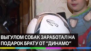 Школьник заработал на подарок брату выгулом собак. При чём здесь футболисты из «Динамо»?