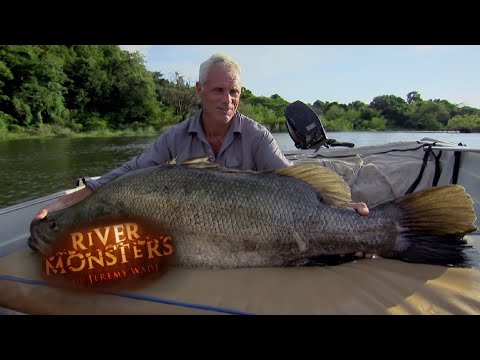 Catching A Nile Perch! | PERCH | River Monsters