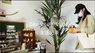 [SUB] VLOG 70|Draw together with kitten,lotusroot pancake,dailylife at home