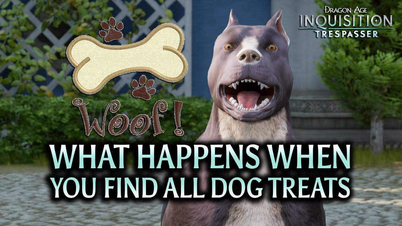Dragon Age Dog Treats