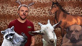 +100500 - Спецвыпуск Про Животных