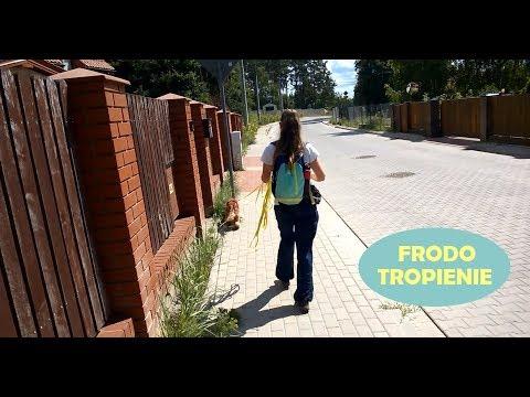 Frodo tropi :)