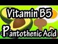 Pantothenic Acid Vitamin B5 - Foods High In Pantothenic Acid Vitamin B5