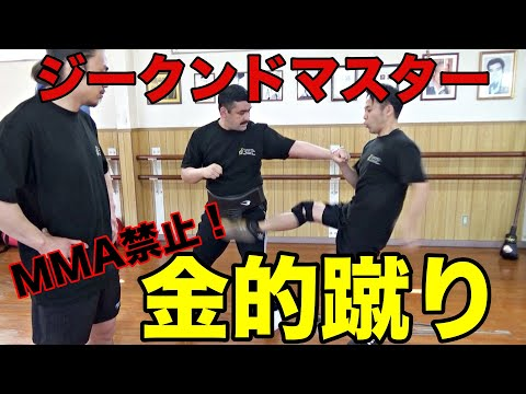 超危険!格闘家がジークンドーマスターに反則技「金的蹴り」を学ぶ!