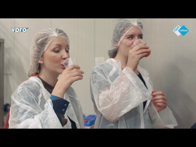 VPRO Dagelijkse Dosis Design aflevering 2 Eten Chloé Rutzerveld