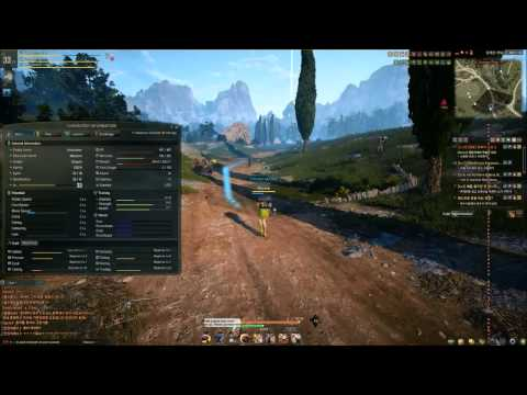 Black Desert - HOW TO - Increase Maximum Weight