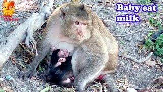 ฺTo see.....Baby eat mother's milk to sleep.