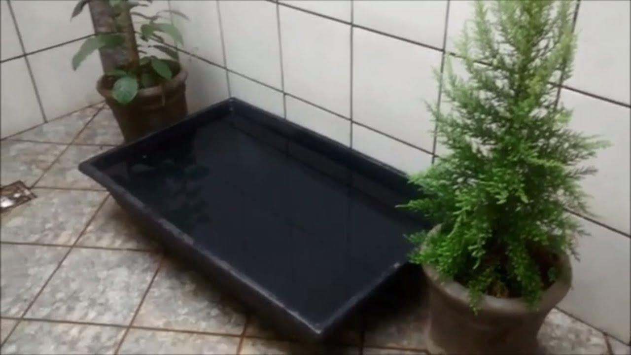 mini jardim de inverno:Jardim de inverno passo a passo com fonte/mini lago – parte 1