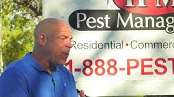 See Pest Control Company Egg Harbor Township NJ 888-737-8373 Pest Control Egg Harbor Township NJ