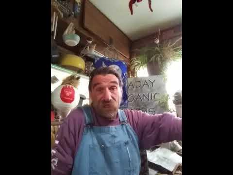 GMO Tuesday...Today we talk aboutCarey Gillam's Whitewash