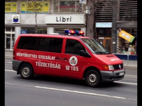 Katasztrófavédelem Mentőkutyás szolgálat vonul // Disaster Management K-9 unit, Budapest