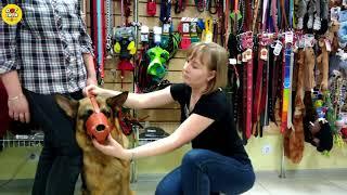Как подобрать намордник для собаки
