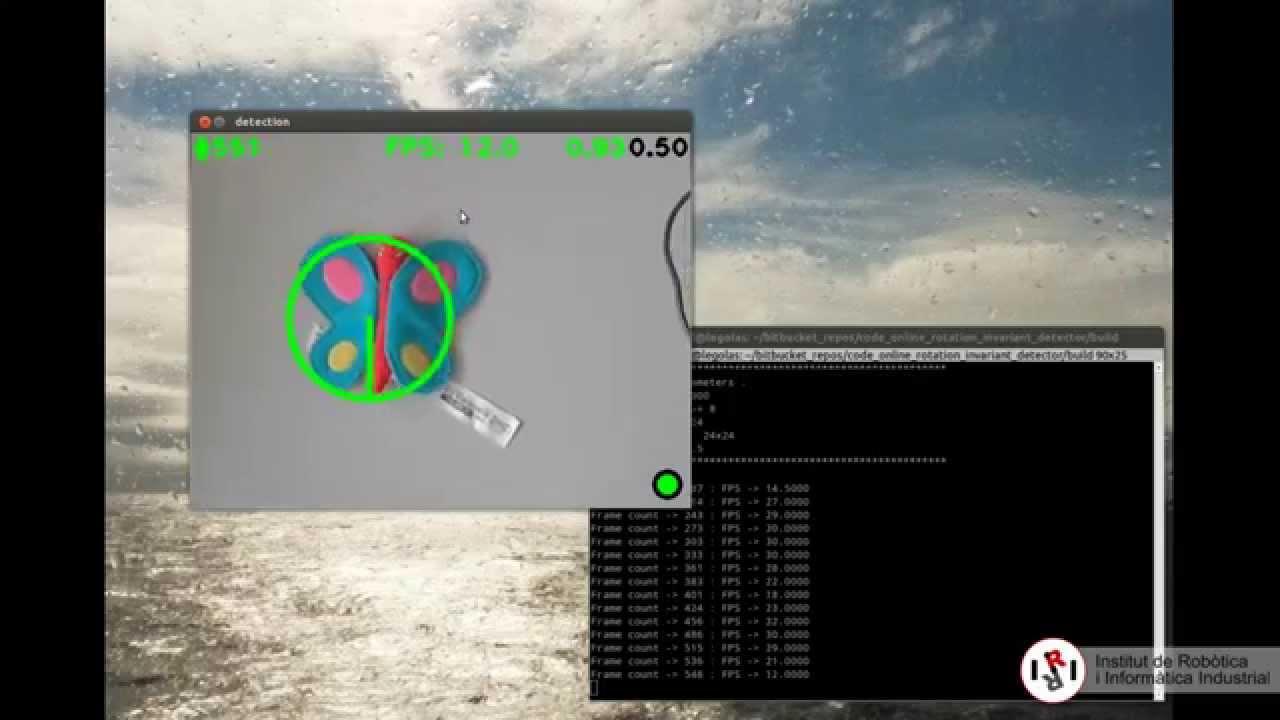 Online Rotation-Invariant Detector [OpenCV Code]
