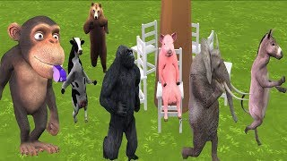 Outdoor Games for Kids Funny Monkey Animals Playing Musical Chairs | Animal Toys For Kids