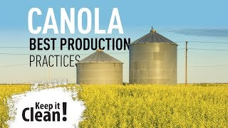Keep it Clean! - Canola Best Production Practices