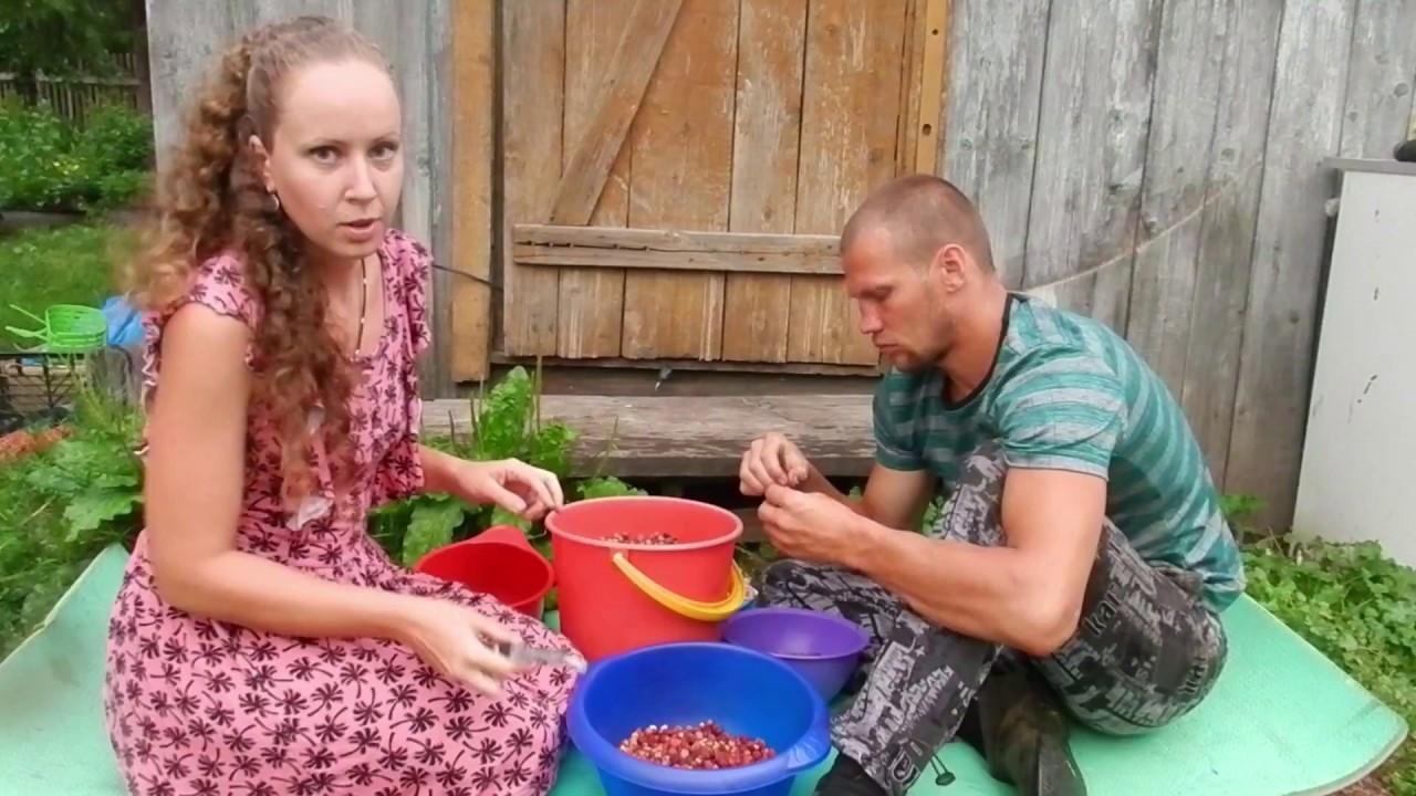 Доходы и расходы в деревне//Жизнь в деревне - YouTube