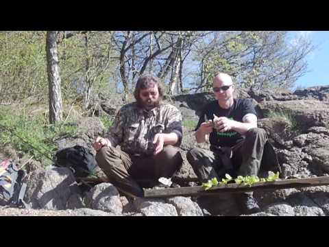 Angel- und Natur-Abenteuer Süd-Norwegen (Norge 2015 - Der Film)