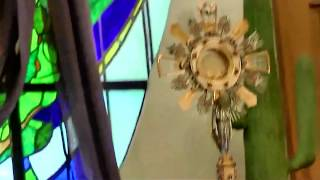 Eucharistic Adoration: Offer our Whole Life To Jesus To Heal- Rev.Fr. Augustine Vallooran
