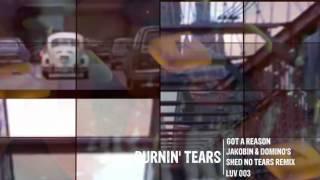 Burnin´ Tears - Got A Reason (Jakobin & Domino´s Shed No Tear Remix)