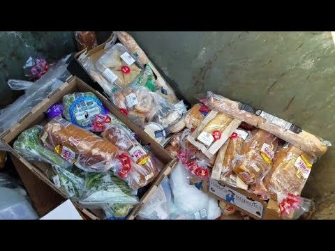 DUMPSTER DIVING ALDI DAILY VIDEO #20
