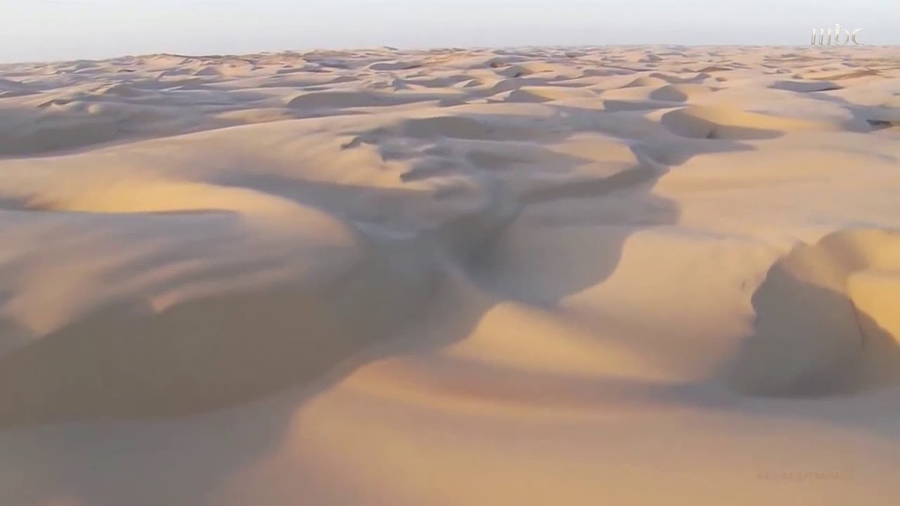 مراحل تحول الجزيرة العربية من غابات إلى صحراء.. وحقيقة مفاجئة عن الربع الخالي