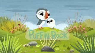 Puffin Rock Theme Song