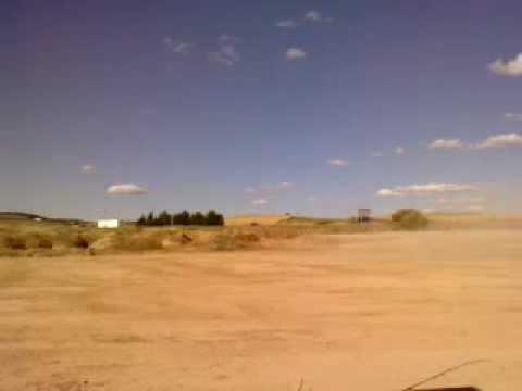 Buggy Kinroad 250 Sahara Zafra