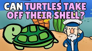 Can Turtles Take Off Their Shell?
