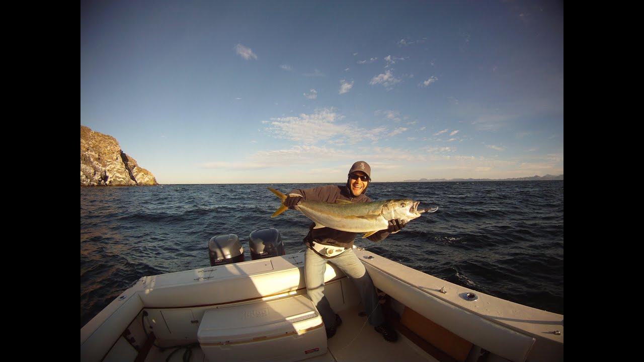San carlos mx yellowtail fishing and spearfishing youtube for San carlos mexico fishing
