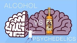 How Society Views Alcohol Culture Vs. Psychedelic Culture