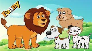 Hunde Cartoons für Kinder, Full Episodes - Lustige Tiere, Cartoons Für Kinder - Cutedog, Lion