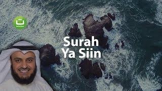 Surah YASIN Merdu dan Menyejukkan - Mishari Rasyid Al-Afasy