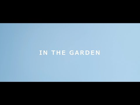 Apollo Stands - In The Garden (Official Music Video)