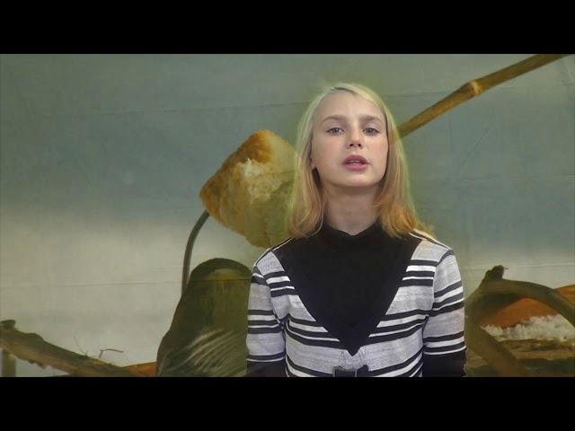 Изображение предпросмотра прочтения – ВалентинаГорячева читает произведение «Синица» И.С.Тургенева