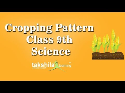 CBSE Class 9 Science Online/Offline Classes | Cropping pattern | NCERT Solutions| ICSE |  Syllabus