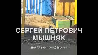 Кот | Начальник участка №5 — Сергей Петрович МЫШНЯК