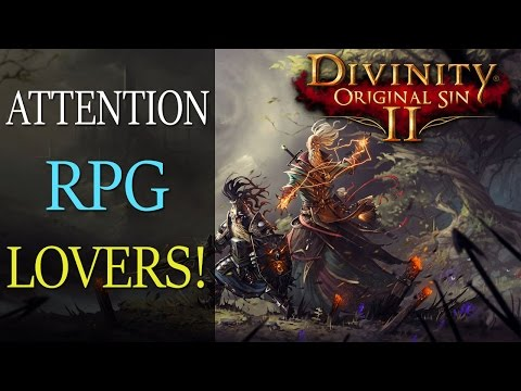 If You Love RPGs, You NEED To Look Into Divinity Original Sin II!