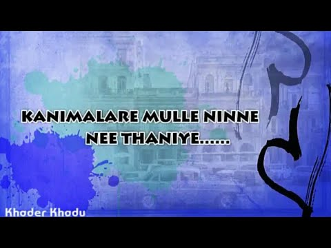 Kanimalare Mulle Song With Lyrics   Whatsapp Status Video