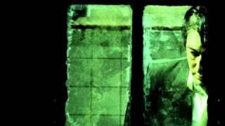 Alain Bashung - La Nuit Je Mens (Officiel Clip)