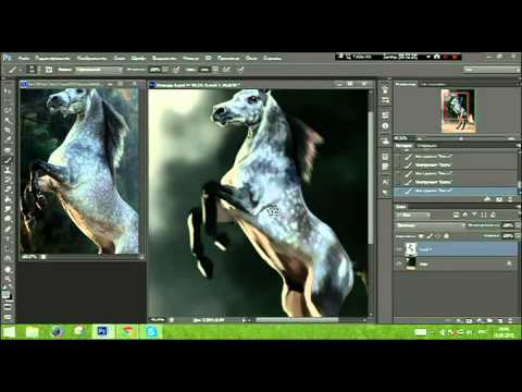 Gray horse - Speedpaint