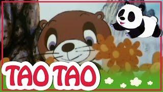 Tao Tao - 45 - טוק וMok