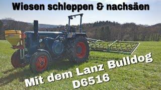 Lanz Bulldog Wiesen schleppen & nachsäen [D6516]